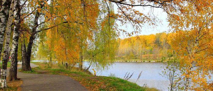 finstrip, финстрип сентябрь, осень